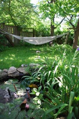 Back-yard in Spring