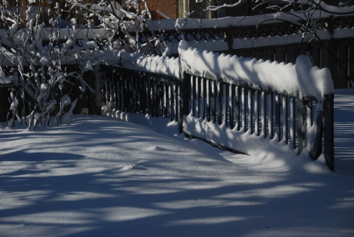 Winter Fence - KP
