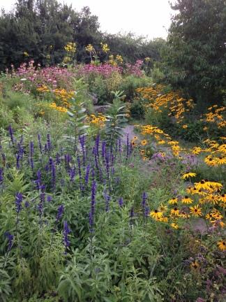Butterfly Garden KP