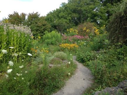 Butterfly Garden 2 KP